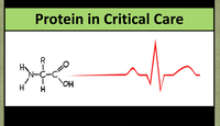 Protein in critical care...