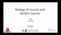 Biology of muscle and tendon i...