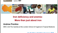 Iron deficiency and anaemia. M...